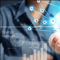 Energy Management for Physical and Virtual Microgrids